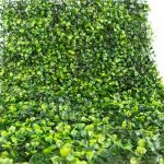 Muros verdes para cualquier evento